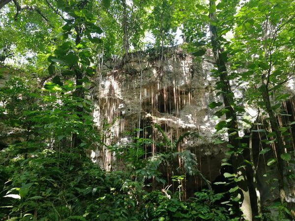 Пещера в нацпарк LosTresOjos