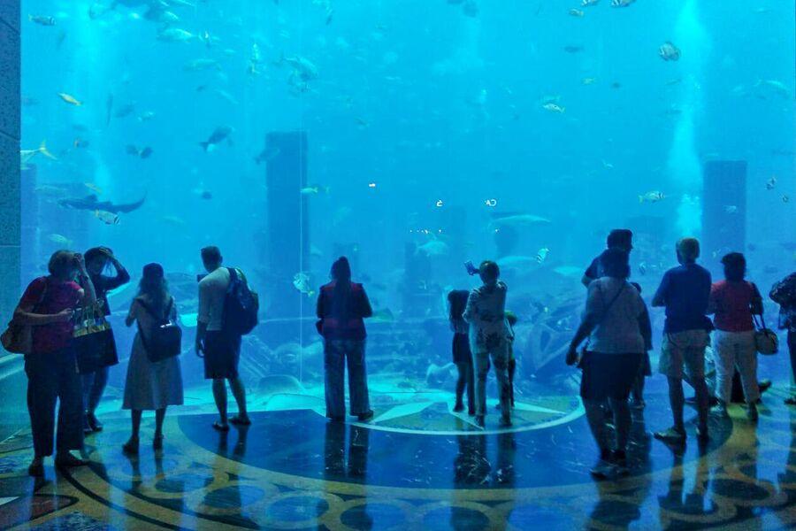 Аквариум в отеле Atlantis The Palm, Дубай, ОАЭ