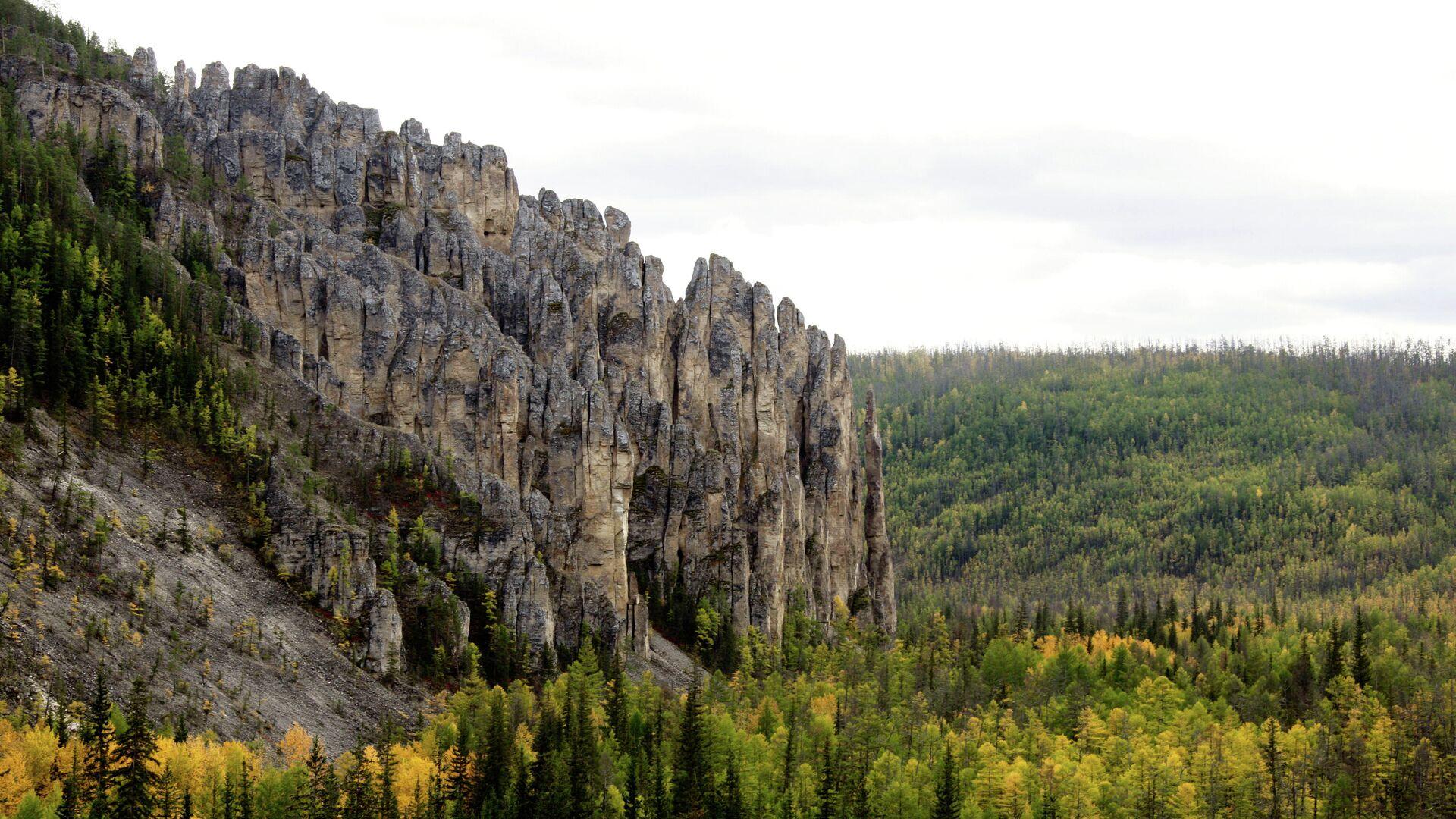 Национальный природный паркЛенские столбы в Якутии - РИА Новости, 1920, 06.05.2021