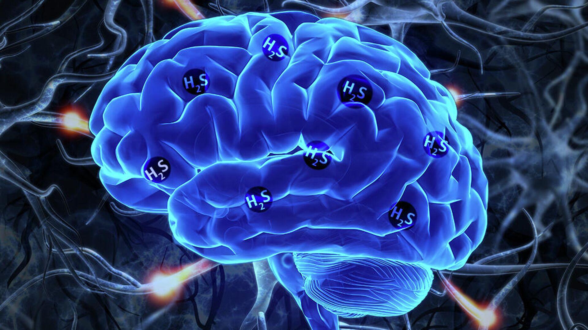 Экспрессия гена MPST, которая приводит к выработке сероводорода, является признаком шизофрении - РИА Новости, 1920, 15.10.2020