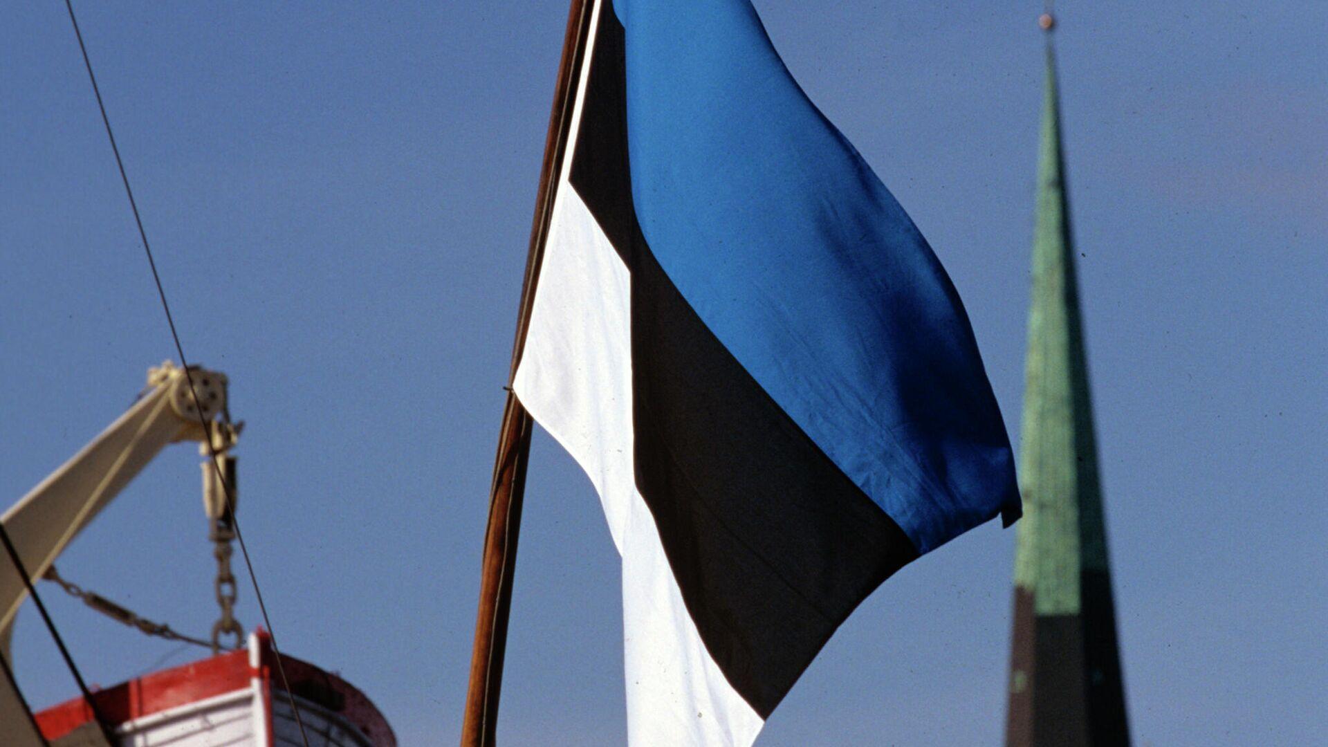 Государственный флаг Эстонии  - РИА Новости, 1920, 27.04.2021