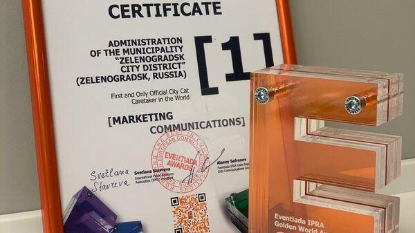 Калининградский город Зеленоградск удостоен премии Eventiada IPRA Golden World Awards в сфере коммуникаций за проект Котошеф