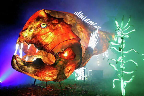 Светящаяся скульптура на фестивале огней Ocean en voie d'illumination в Париже