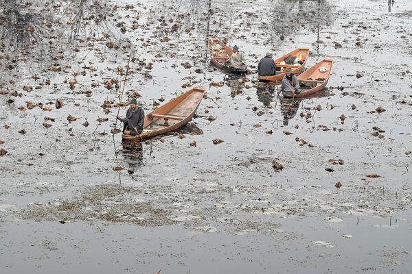 Мужчины на озере Нигин в Сринагаре