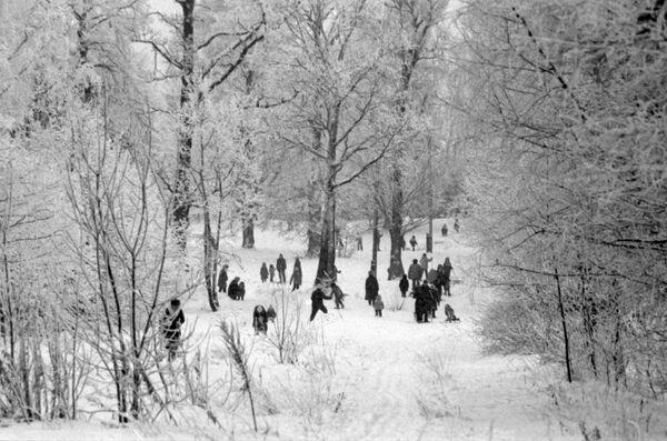 Жители московского микрорайона Ясенево на прогулке в зимнем парке