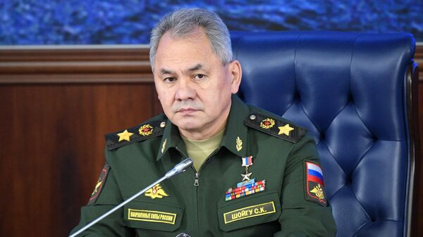 Министр обороны РФ, генерал армии Сергей Шойгу на ежегодном расширенном заседании коллегии министерства обороны РФ