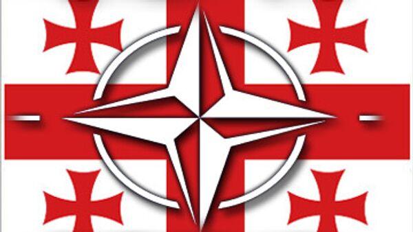 Грузия не вступит в НАТО, не наладив ситуацию с правами человека
