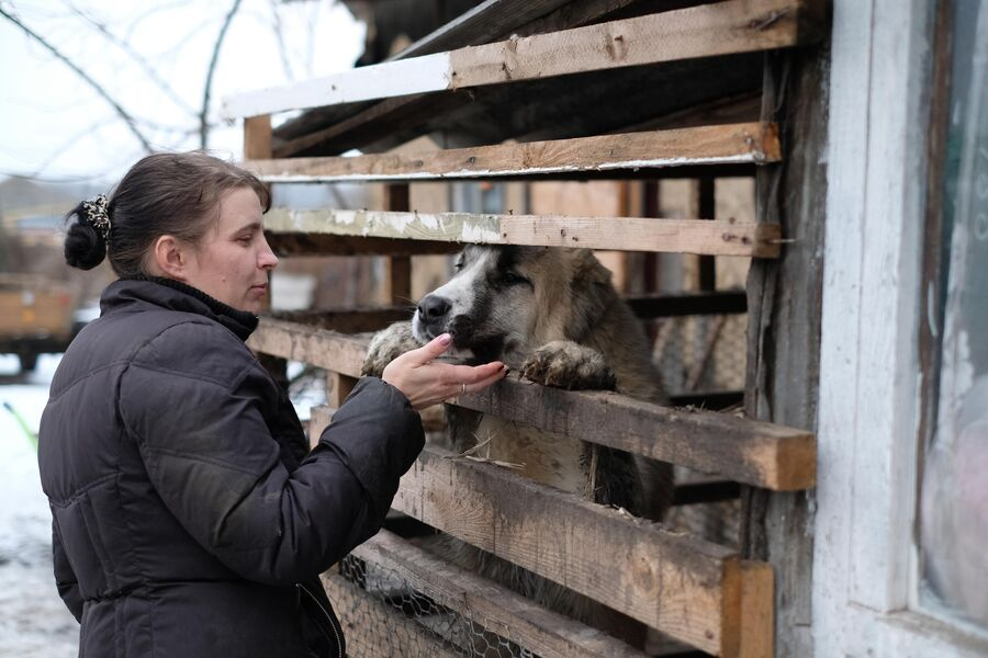 Кавказская овчарка подпускает к себе только Диану