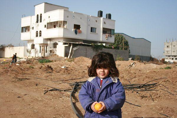 Доноры обещают сотни миллионов долларов на восстановление Газы
