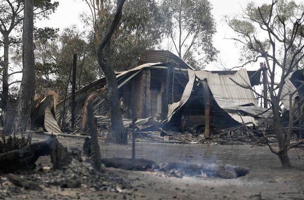 В лесных пожарах на юге Австралии погибли 200 человек