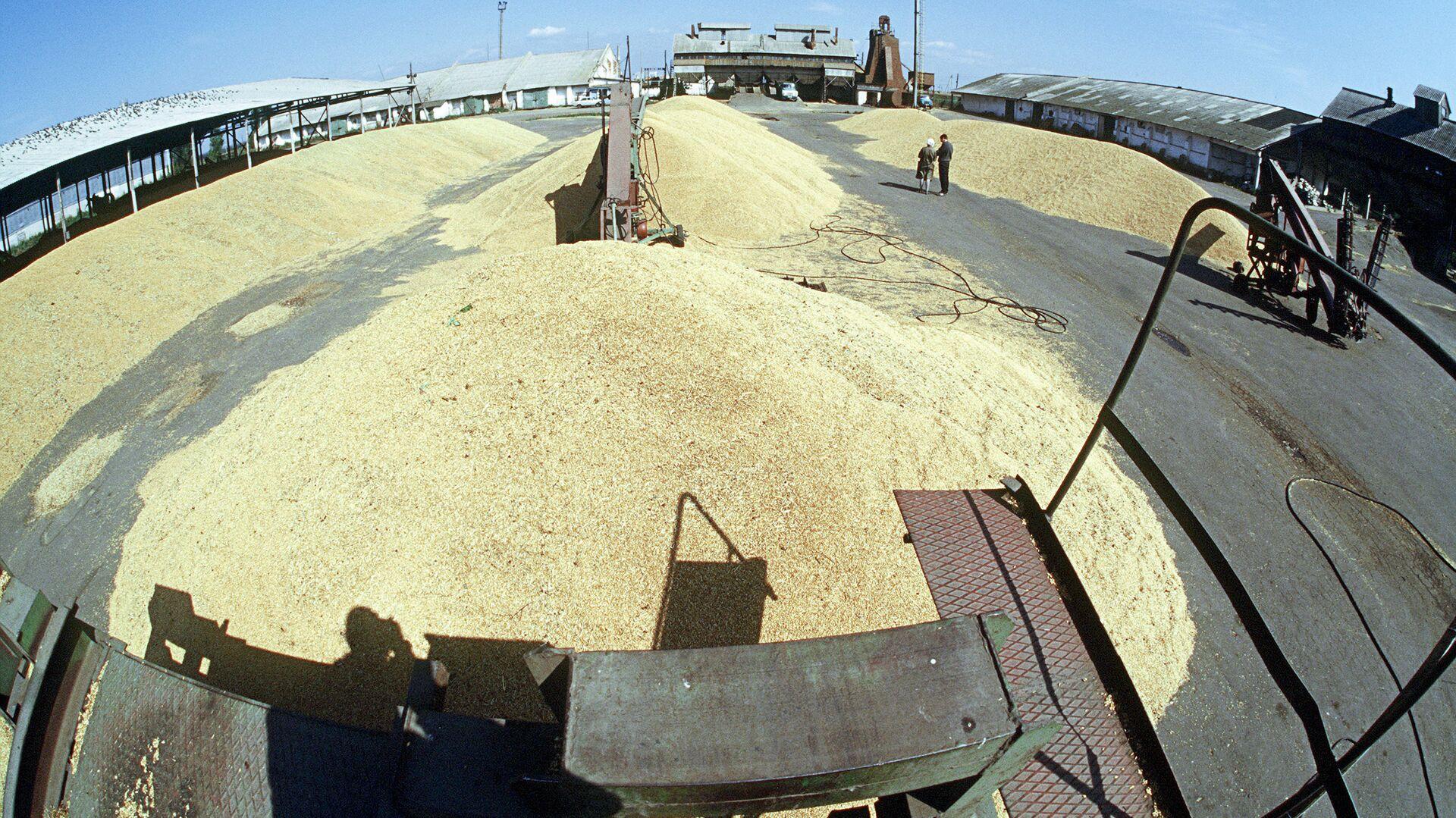 Элеватор пензенская область транспортер зерновой шнековый передвижной
