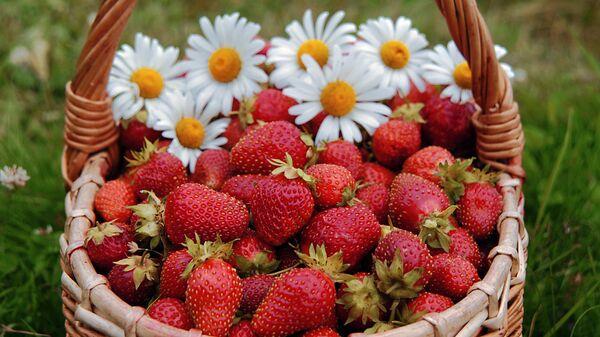 Журнал Forbes опубликовал список самых полезных для здоровья человека продуктов вне зависимости от страны происхождения, кулинарной традиции или лечебной диеты