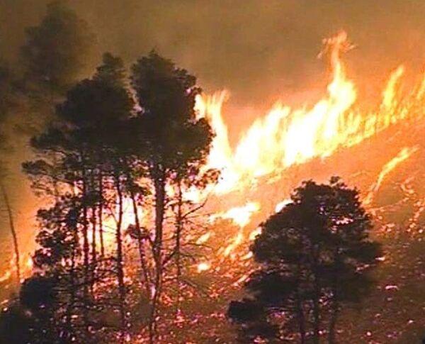 Греция в огне. Борьбу со стихией ведут на земле и с воздуха