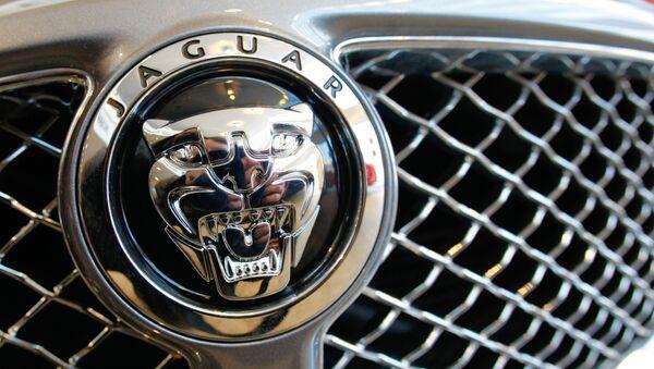Jaguar. Архивное фото