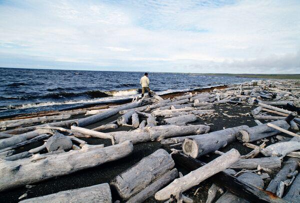 Терпевший бедствие в Рыбинском водохранилище сухогруз частично затонул