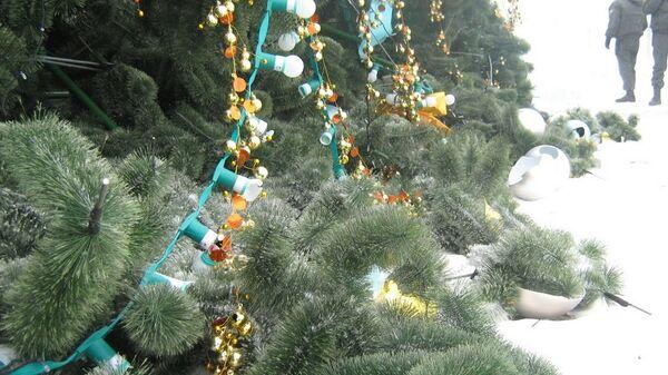 Во Владивостоке ветер свалил новогоднюю елку за 5 миллионов рублей