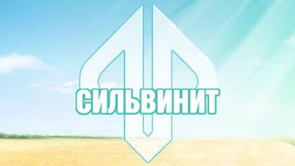 Сильвинит может сократить дивиденды-2009 в 3 раза - до 2,2 млрд руб