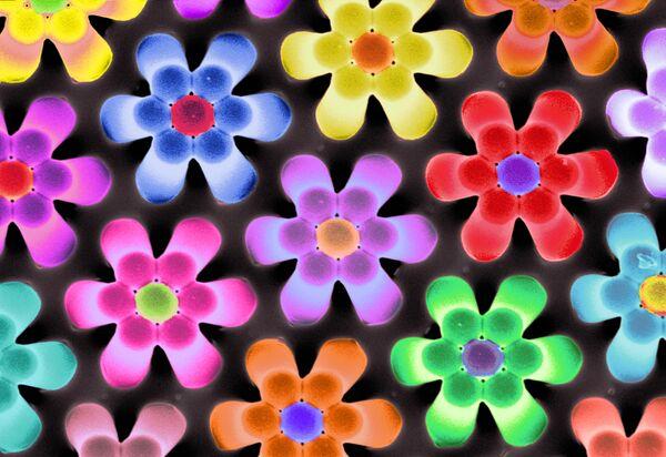 «Власть цветов» - эта «клумба» состоит из полимерных «колон» высотой 10 микрон, сомкнувшихся друг с другом.
