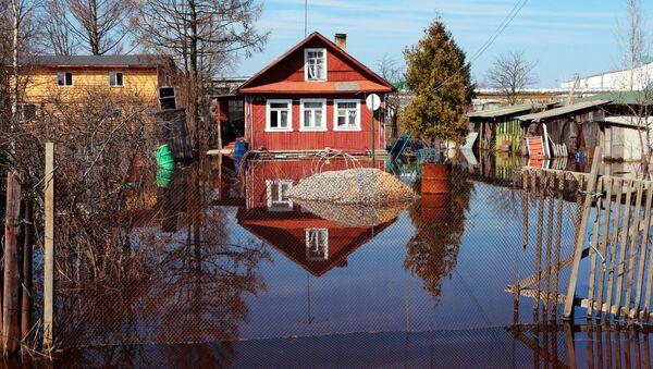 Подтопление домов в Ленинградской области в результате весеннего паводка на реке Тосна