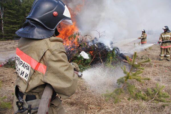 Сотрудники МЧС России во время тушения лесного пожара. Архив