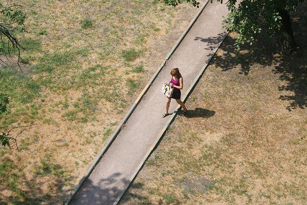 Засохшая трава в Москве из-за аномальной жары