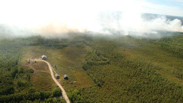 Лесные пожары в Югре