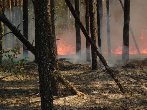 Пожар в Ульяновской области