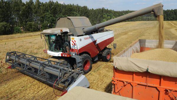Уборка урожая зерновых. Архив