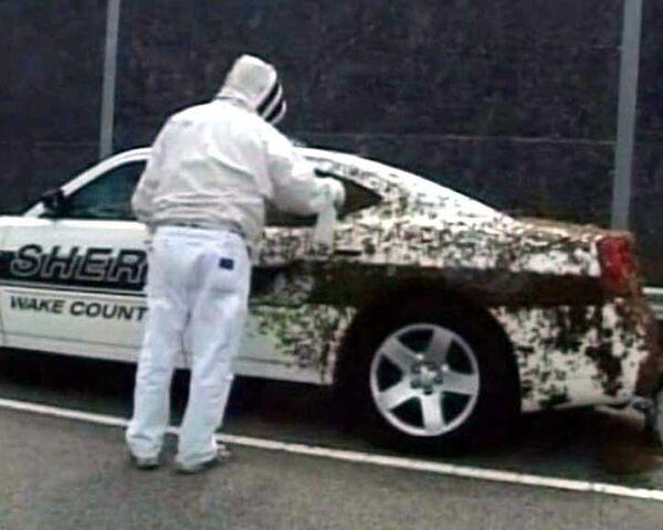 Полицейский оказался в заложниках у разъяренных пчел