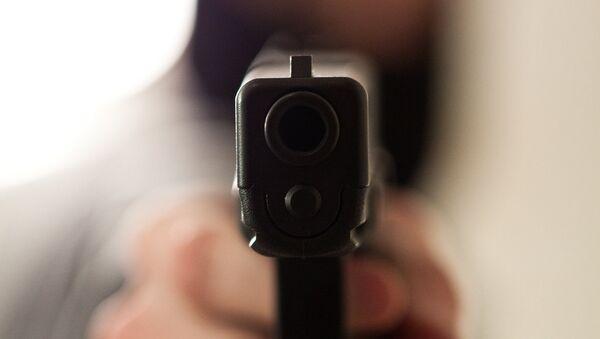 МВД упростило выдачу лицензий на оружие коллекционерам и спортсменам