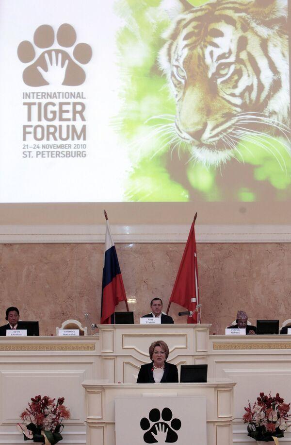 Международный форум по проблемам, связанным с сохранением тигра на Земле, открылся в Санкт-Петербурге