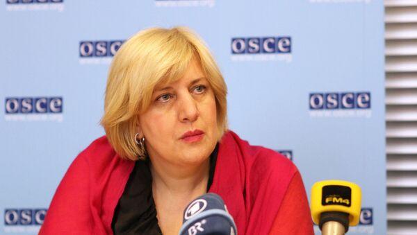 Представитель Организации по безопасности и сотрудничеству в Европе (ОБСЕ) по вопросам свободы СМИ Дуня Миятович, архивное фото