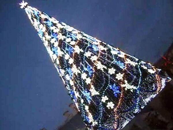 Новогодние елки появились на улицах Краснодара, где зеленеет трава