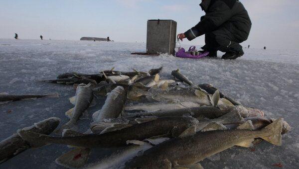 Зимняя рыбалка на льду Амурского залива вблизи Владивостока