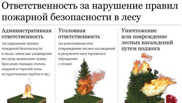 Ответственность за нарушение правил пожарной безопасности в лесу