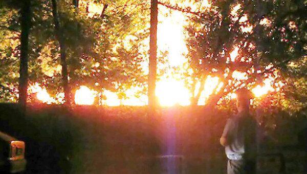 Высота пламени пожара в Лучевом просеке составила 20 метров