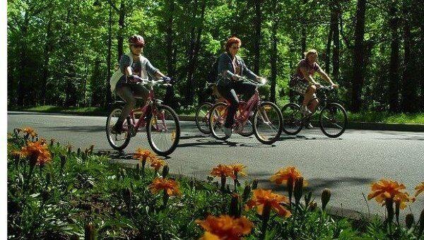 Велосипедисты. Архив
