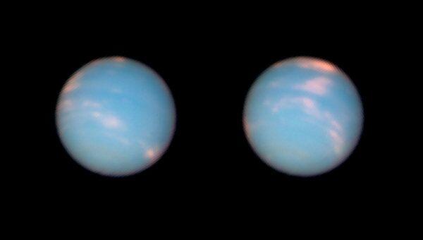 Фотография Нептуна, сделанная орбитальным телескопом «Хаббл». Архив