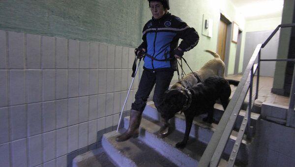 Работа собак-поводырей с инвалидом по зрению. Архив