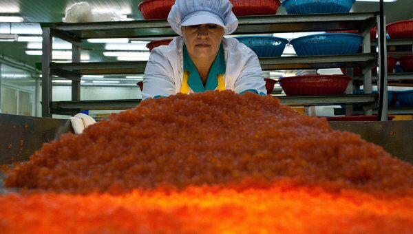 Рыбоперерабатывающий завод Ясный ЗАО Гидрострой в поселке Китовый на острове Итуруп