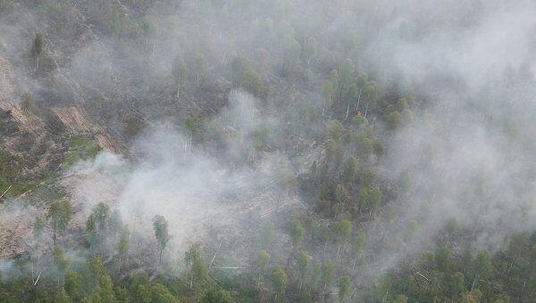 Нынешняя засуха с пожарами недолго прожила вне исторического контекста