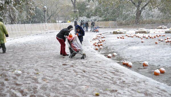 Снегопад в Нью-Йорке 29 октября 2011 года
