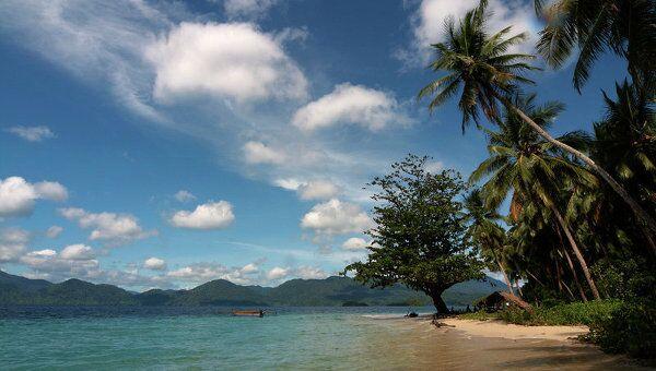 Земной и подводный мир Индонезии