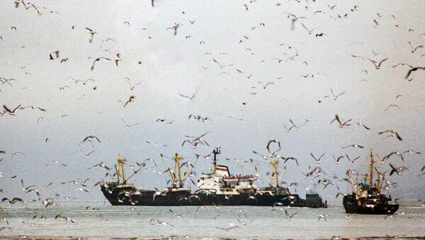 Рыболовецкие судна. Архивное фото