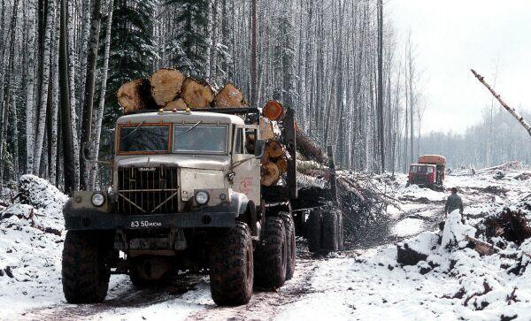Работы по заготовке леса в леспромхозе Новая Игирма