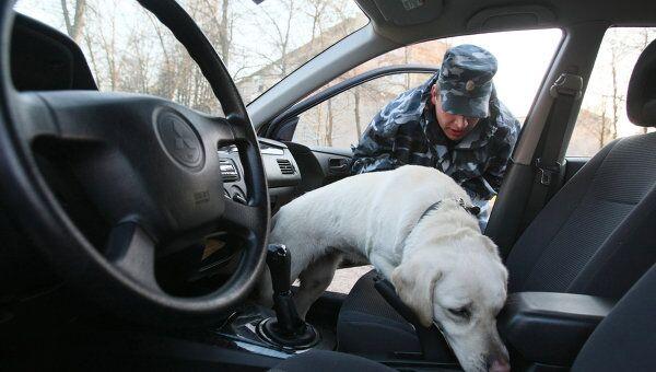 Машина дипломата, вывезшего ребенка из России, не подлежала досмотру