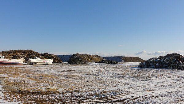 Год после катастрофы: за несколько километров от моря, префектура Фукусима