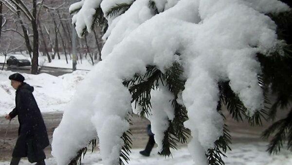 Зима не хочет уходить из Москвы