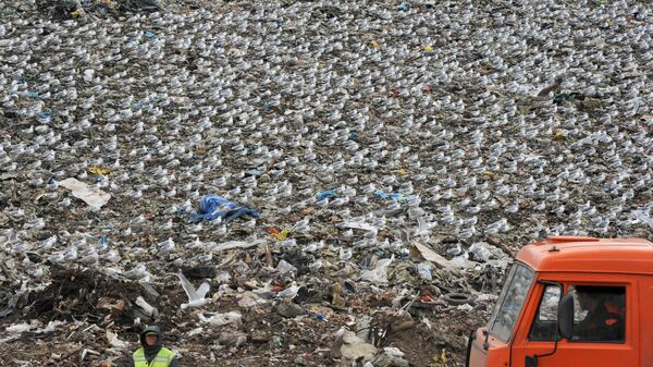 Свалка бытовых отходов. Архивное Фото.