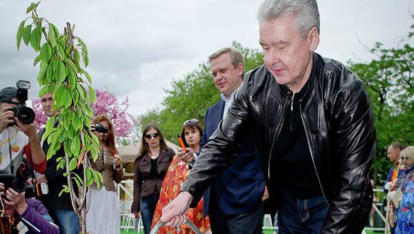 Сергей Собянин на открытии фестиваля искусств Черешневый лес в ЦПКиО им. Горького